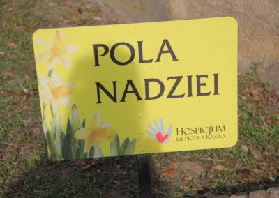 Pola Nadziei